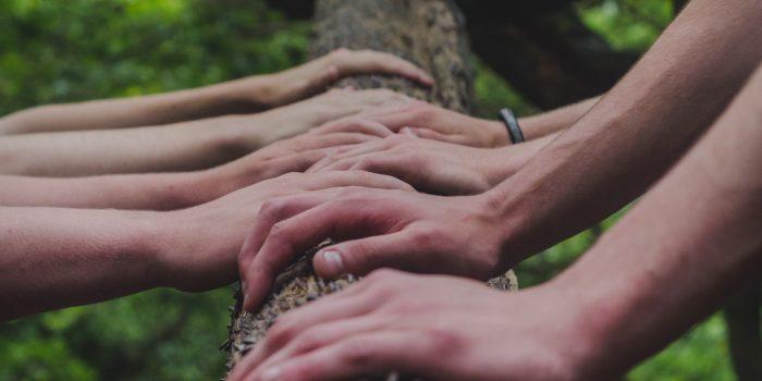 team holding branch